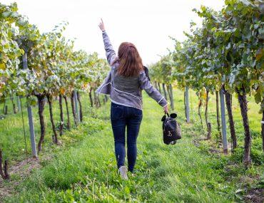 1600-fashion-hse24-outfit-justizpalast-violetfleur-violet-fleur-nadjanemetz-nadja-nemetz-austrianblogger-austrian-blogger-beautyblogger-fashionblogger-modeblogger-